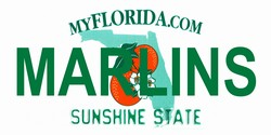 LP-2085 Florida State Background License Plates - Marlins