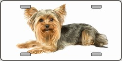 LP-2181 Yorkshire Terrier Dog Pet Novelty License Plates - Full Color Photography License Plates