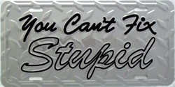 LP-839 You Cant Fix Stupid - Silver - Foxworthy License Plate - X135-b